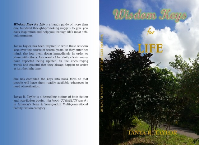 Wisdom Keys Paperback Book cover JPEG)