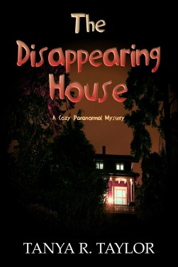 THE DISAPPEARING HOUSE (without series indication)